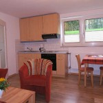 Wohnraum mit Einbauküche